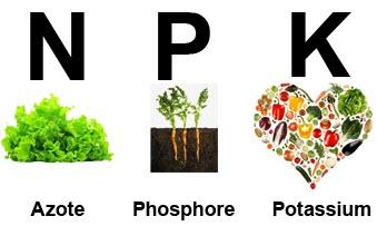 Nutrients NPK